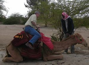 Kevin Getting of Camel
